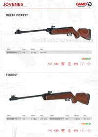 CARBINES AIR COMPRIME 014 Gamo